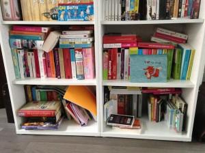 Mijn deeltje van onze boekenkast. Linksboven: nog niet gelezen. Rechtsboven: Gelezen chicklits. Linksonder: Kookboeken. Rechtsonder: Serieuze boeken en non-fictie.
