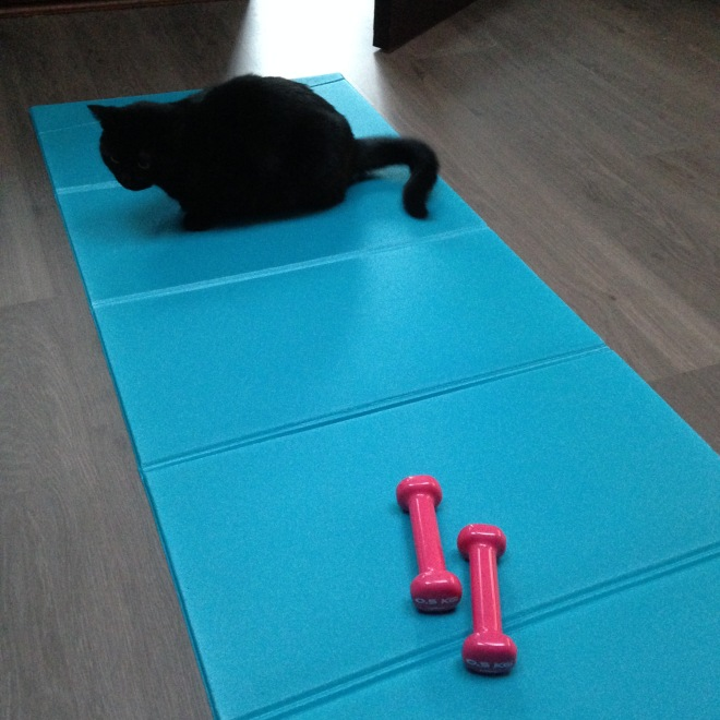 Poes workin' on her fitness.